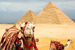 Вояж в солнечный Египет